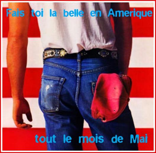 http://faistoilabelle.files.wordpress.com/2011/05/faistoilabelleenamerique.jpg