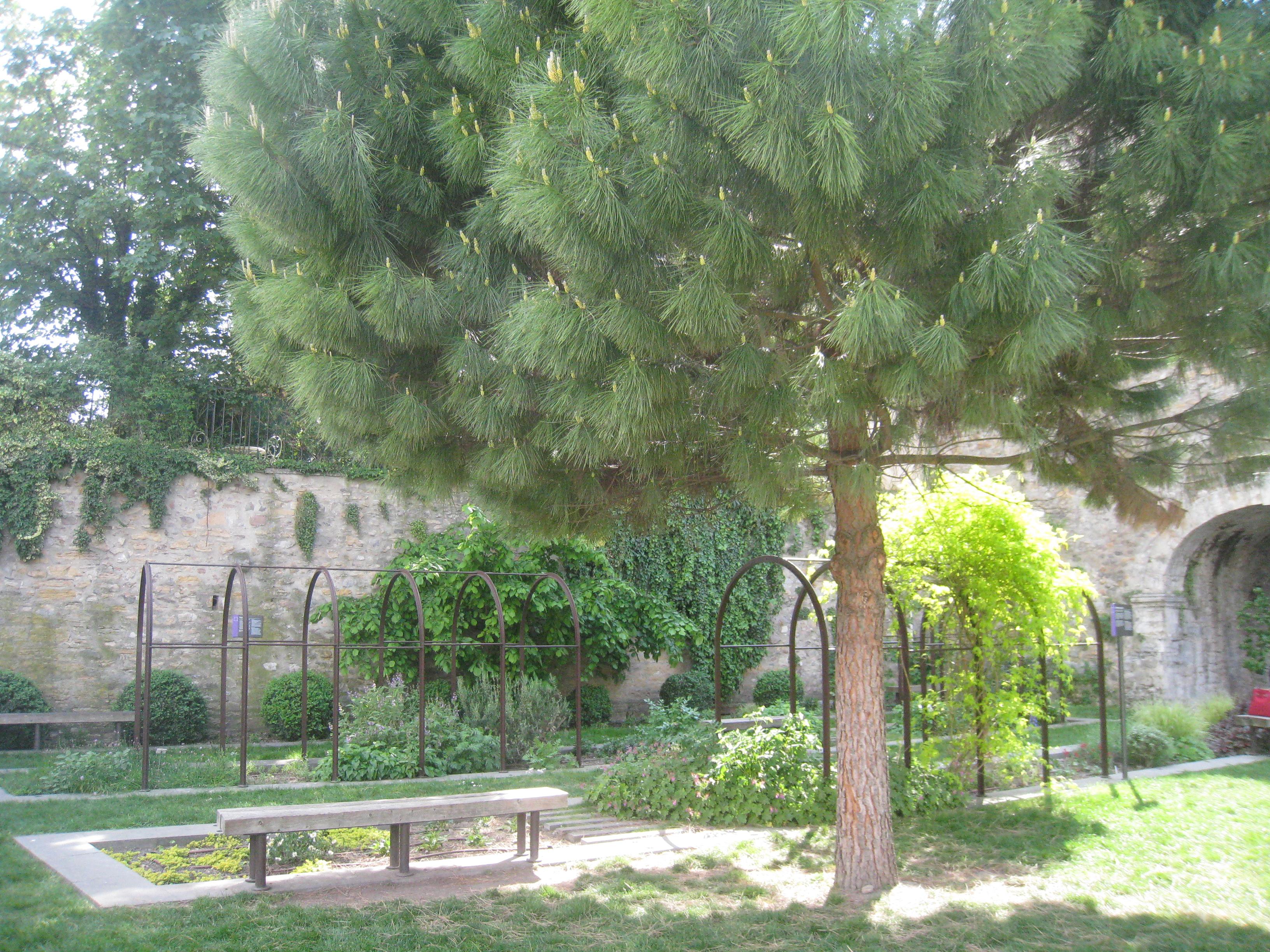 Parcs Et Jardins La Mtropole De Lyon