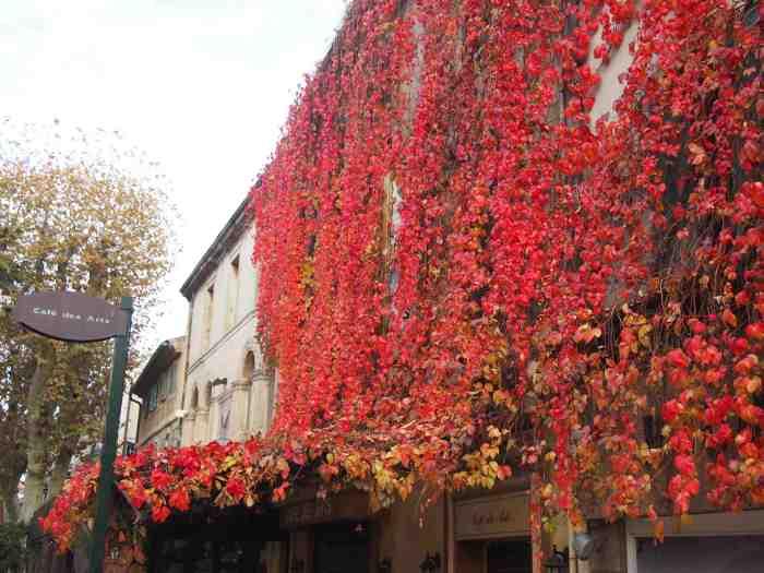 Un dimanche d'automne à St Rémy de Provence(13)