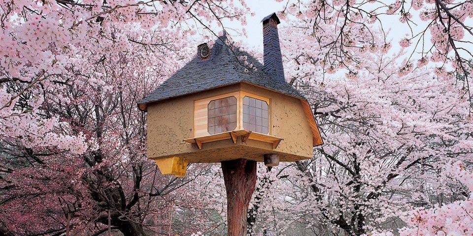 teaser_va_treehouses_top_1210171459_id_536600