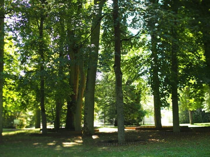 Dans le parc deVittel