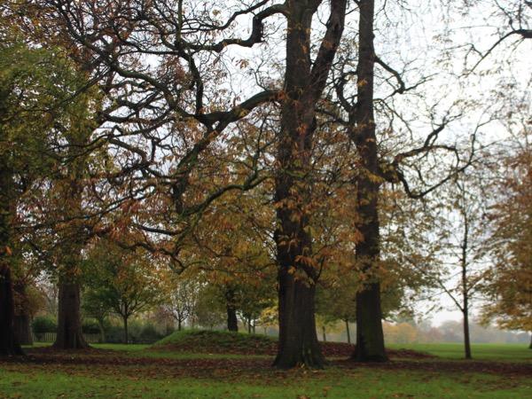 Hyde park automne