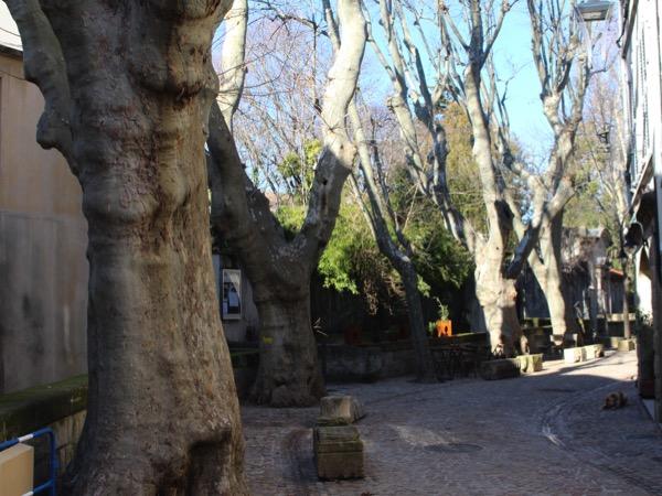 rue teinturiers Avignon