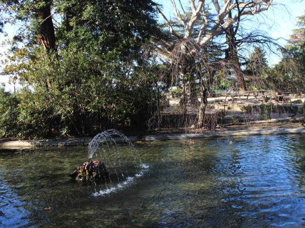 jardin des doms Avignon