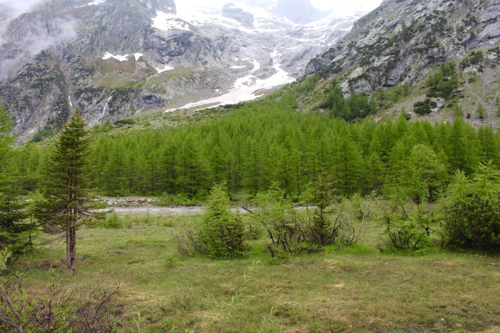 Vallée du Val ferret Italie