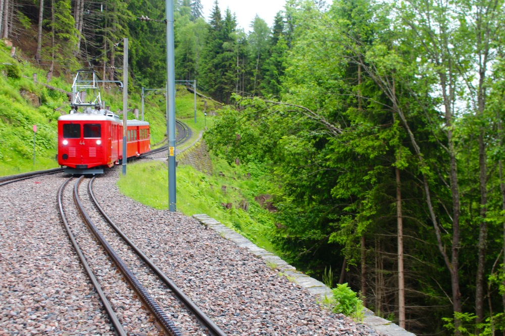 Train Montervers Chamonix