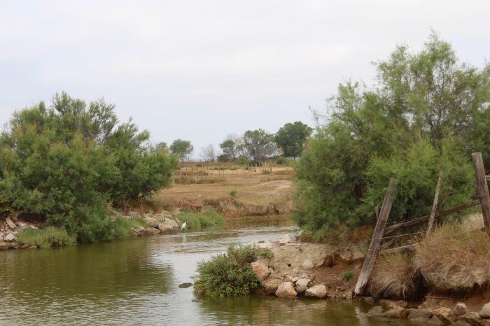 camargue croisière fluviaile