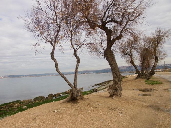 L'étang de Berre àMarignane