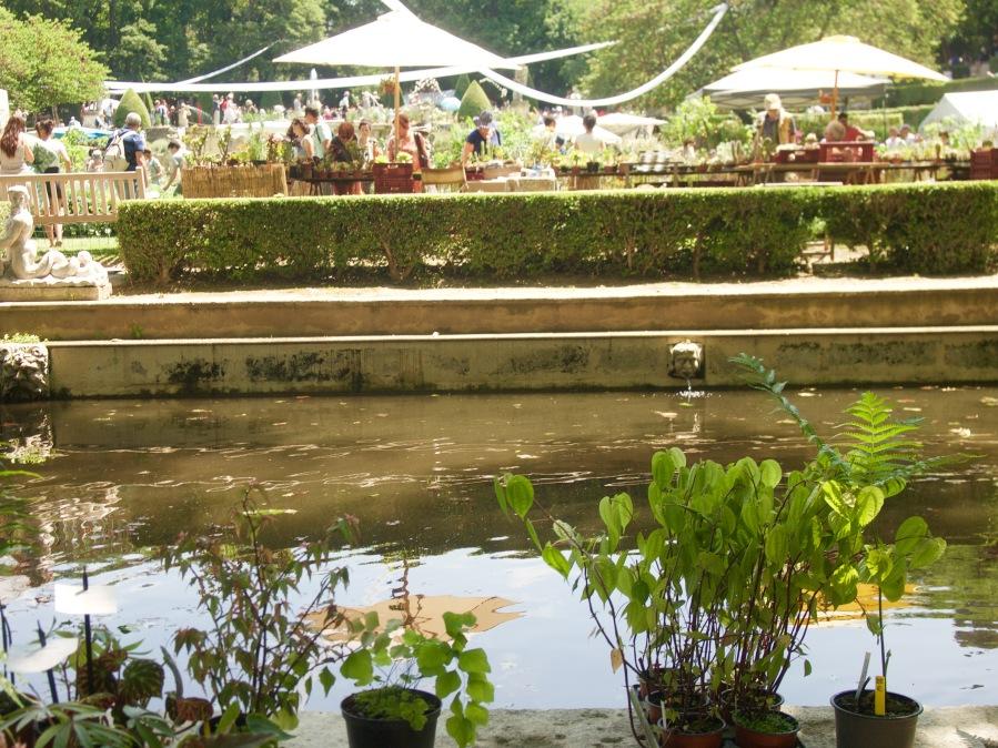 Journées des Plantes d'Albertas àBouc-bel-Air